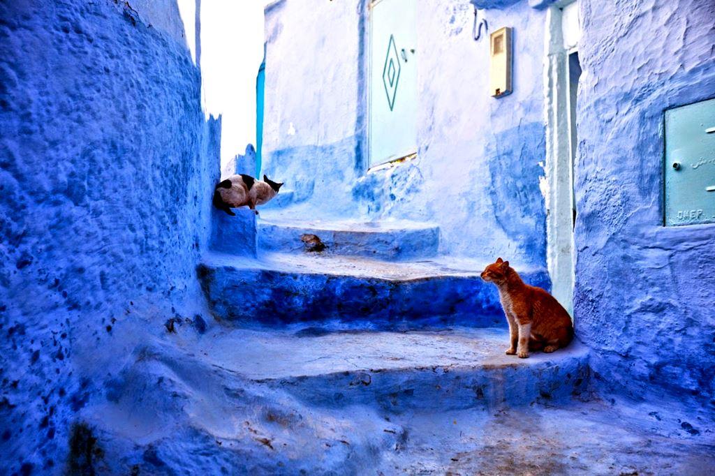 Chefchaouen, a cidade azul do Marrocos